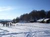 grande faune raquettes pyrenees3