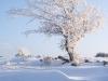 sejour famille neige et raquette2