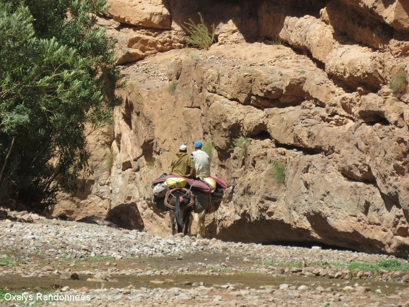 randonnée maroc vallée des roses