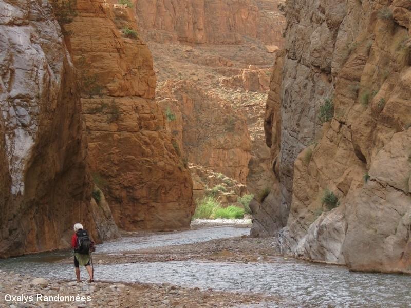 IMG_1904randonnée maroc vallée des roses