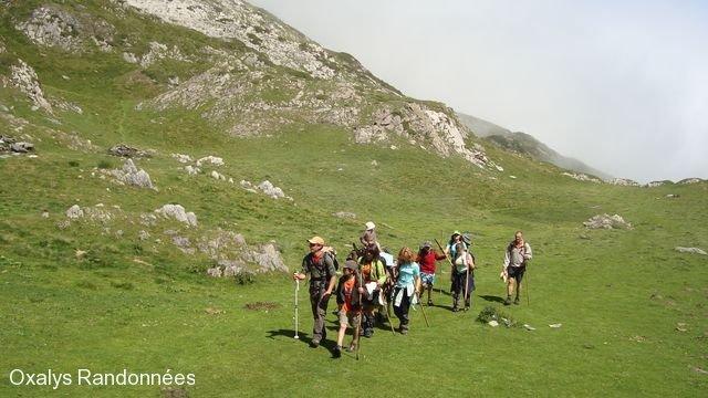 rando ane pyrenees