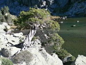 ecotourisme dans les pyrénées